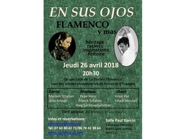 photo de SPECTACLE DE FLAMENCO LYON