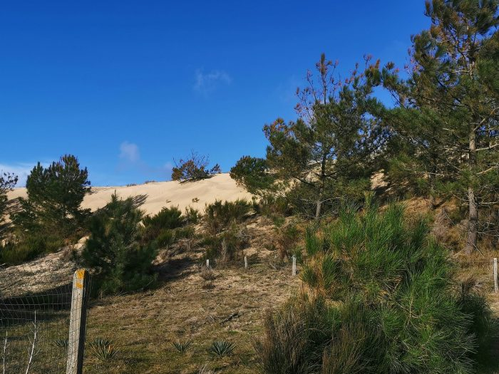 photo de Maison au pied des dunes